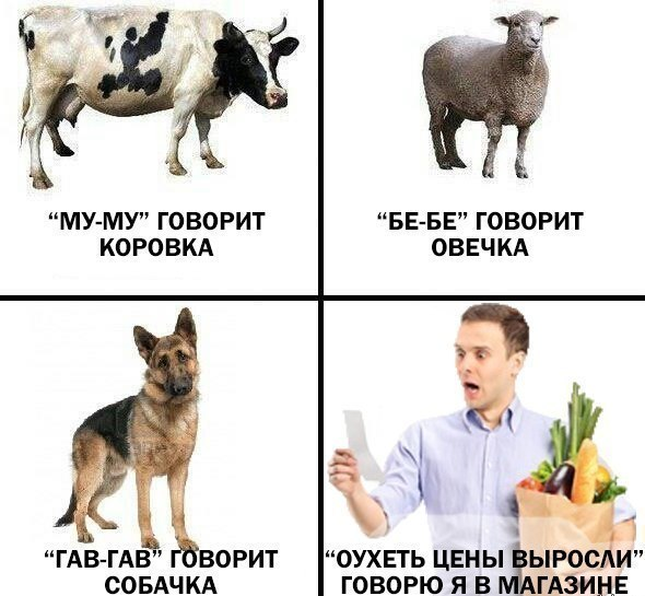 http://www.nissan-4x4.ru/img/posts/42207.jpg